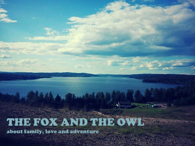 The Fox and the Owl.
