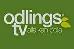 Fler klipp på OdlingsTV