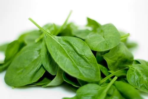 cooking-spinach - تناول السبانخ يعمل على تقوية عضلات الجسم