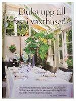 Mitt växthus i Aftonbladet