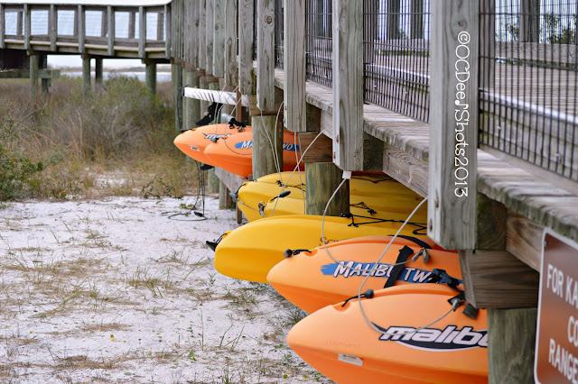 Kayak rentals in Perdido Key FL at Big Lagoon State Park