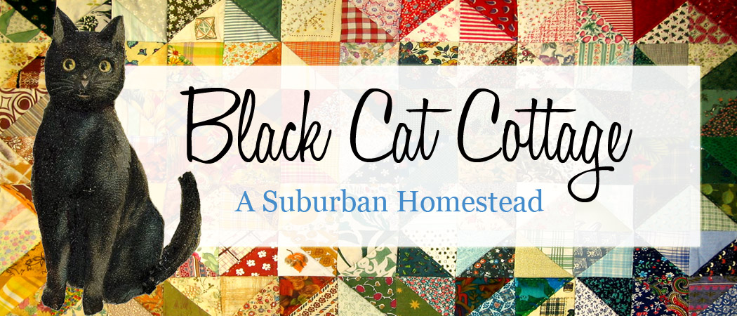 Black Cat Cottage