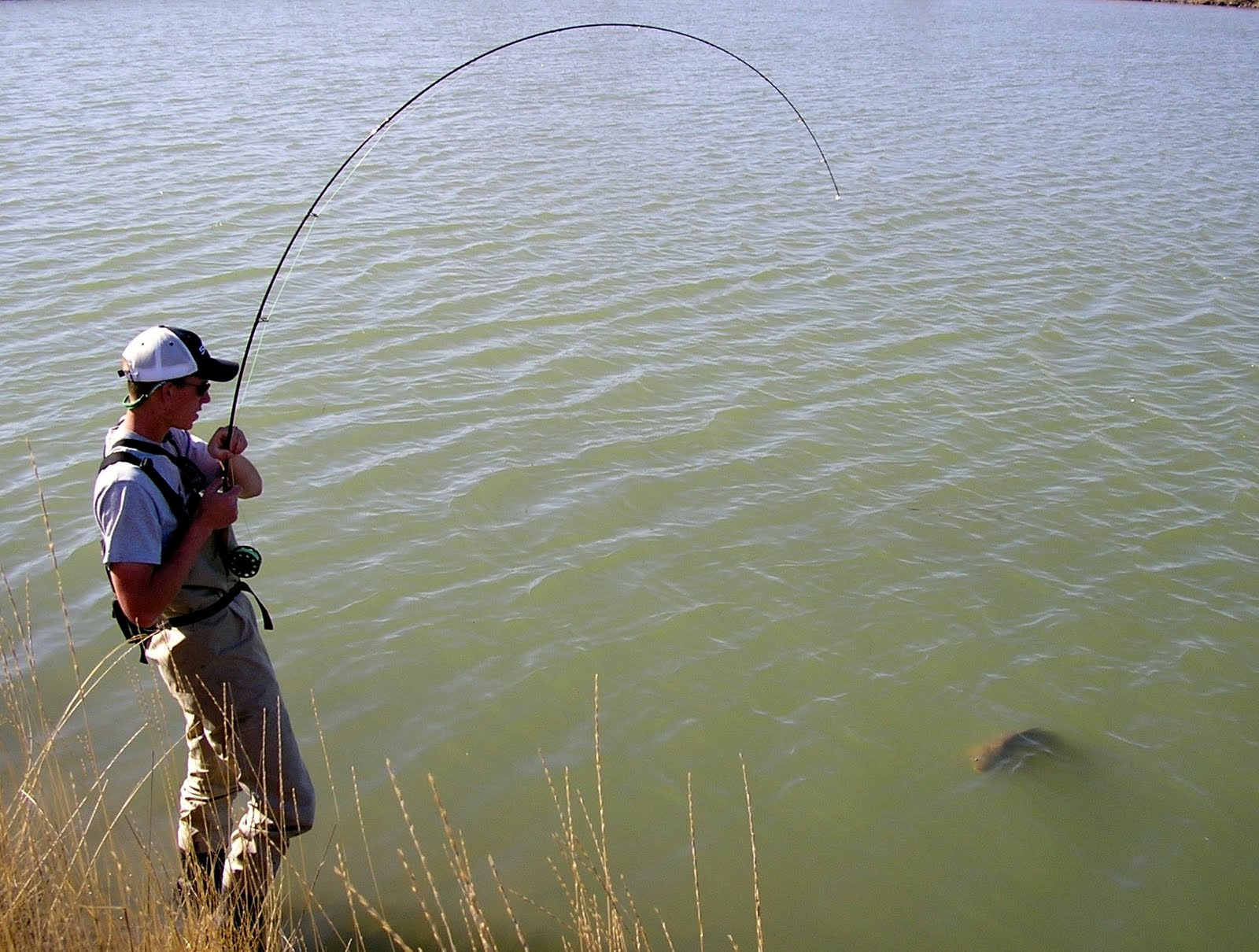 Wwxx http://coloradoflyfishingreports.blogspot.com/2009_01_01_archive.html