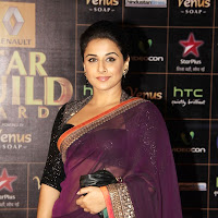 Vidya balan in saree looking gorgeous diva at star guild awards