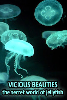 Vicious Beauties: The Secret World Of The Jellyfish - Jelly fish, animal & nature documentary