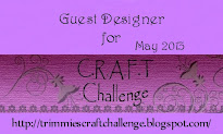 May' 2013: GDT @ C.R.A.F.T. Challenge