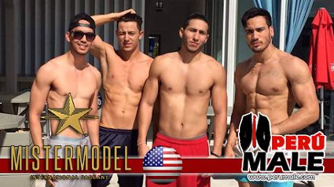 Más imágenes de los candidatos a Mister Model International 2015