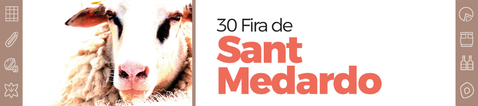 FIRA DE SANT MEDARDO BENABARRE