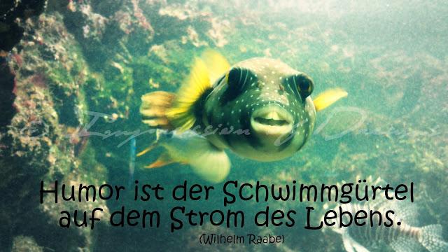 Humor ist der Schwimmgürtel auf dem Strom des Lebens.
