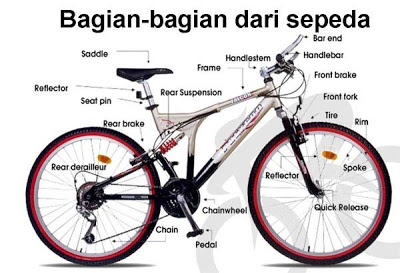 Toko sepeda online: Speed shop bicycle online shopping
