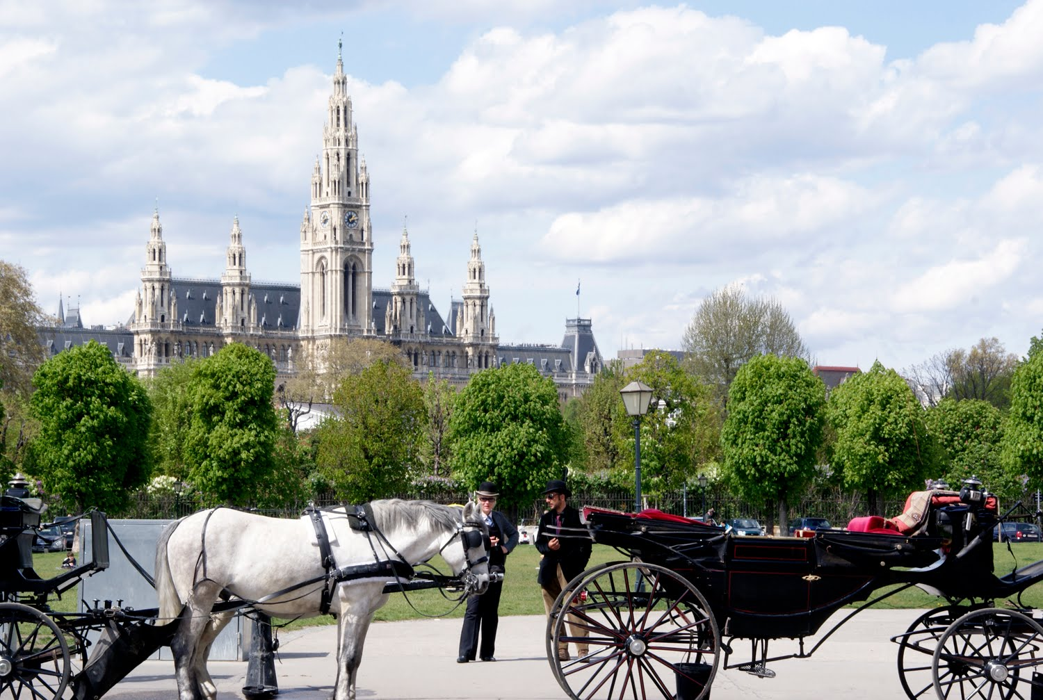horse carriages of vienna by anitam.com
