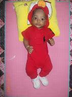 shareef 5 months