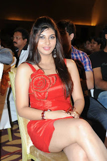 0003 WWW..BLOGSPOT Actress Sarah Sharma  Pictures Exposing her Spicy Legs at Disco Telugu Movie Audio Release Function Picture Posters Stills Image Wallpaper Gallery