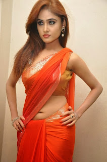 Actress Sony Charishta  Pictures in Saree at Naakaithe Nachindi Audio Launch Function 0068.jpg