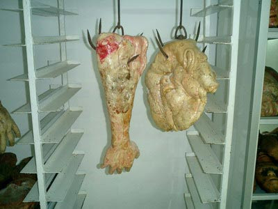 makan daging manusia