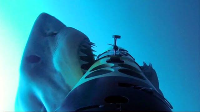 Un dron submarino atacado por los escualos