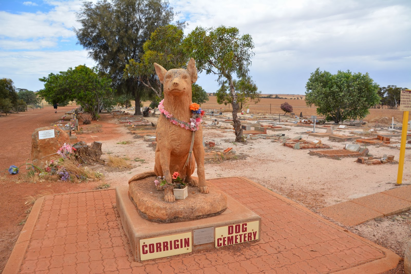 """Corrigin Dog Cemetery""的图片搜索结果"