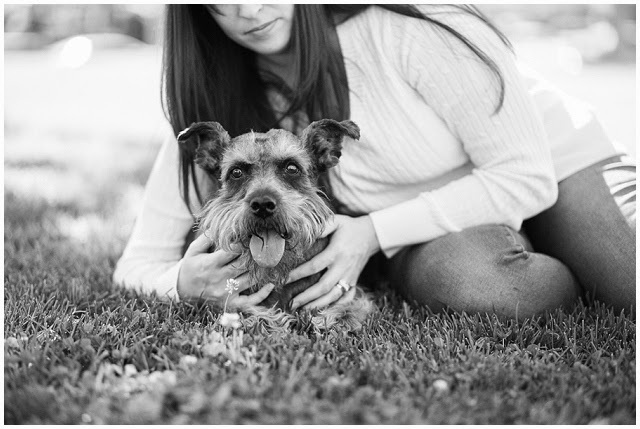 Pet Portrait Photographer Rancho Cucamonga Inland Empire California