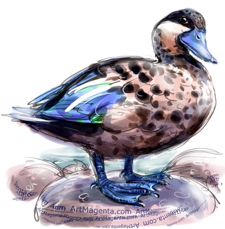 En fågelmålning av en hottentotkricka från Artmagentas svenska galleri om fåglar