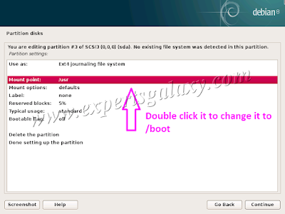 Debian Boot Partition Settings