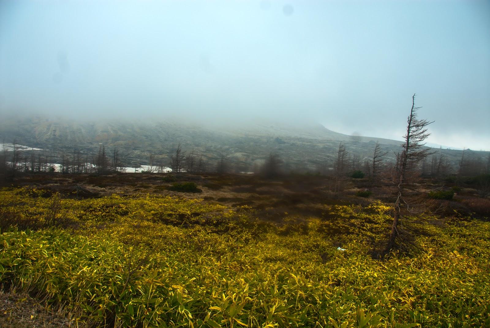 霧のかかる渋峠