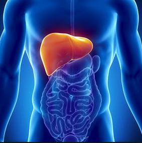 हेपेटाईटिस के कारण लक्षण और देशी इलाज