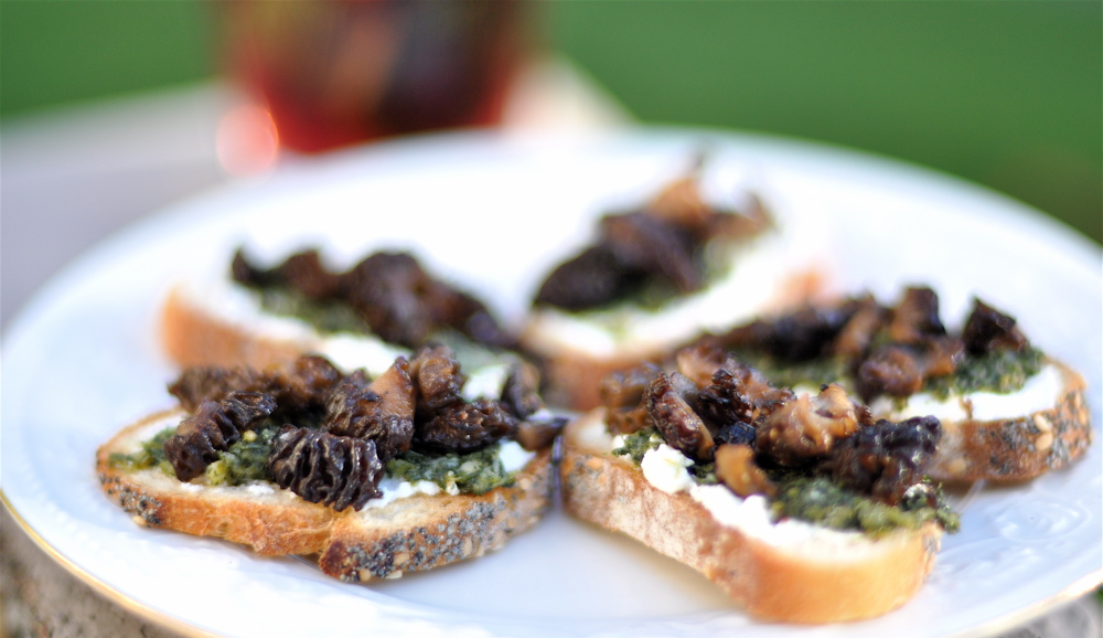 crostini morel crostini recipe on food52 plate of spring garden