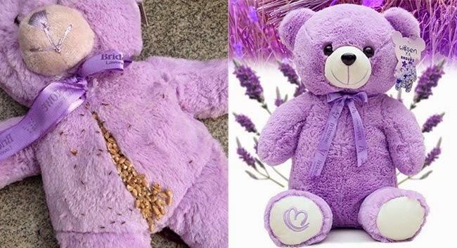ผมนี่ขนลุกเลย!! ตุ๊กตาหมีแสนน่ารัก มีอะไรซ่อนอยู่มาดูกัน