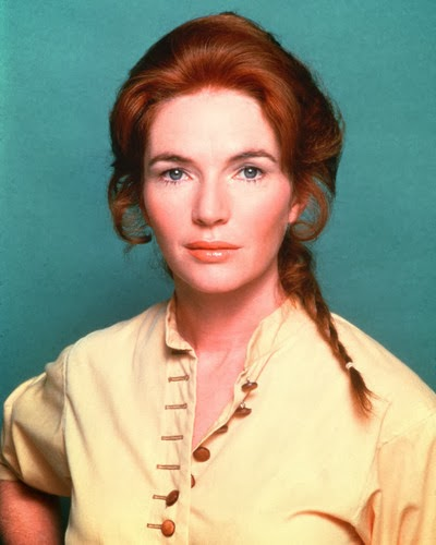 in the region of ice fionnula flanagan