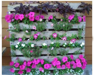 Vertical Garden, Gardening Method in Narrow Land