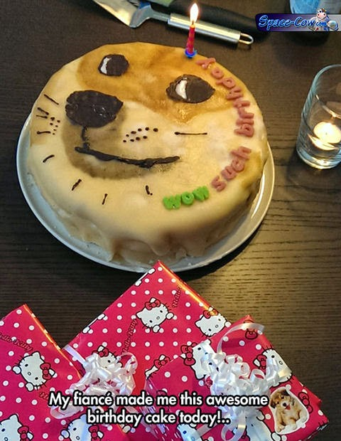 funny doge cake picture