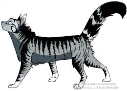 My Kitten, Shadow!