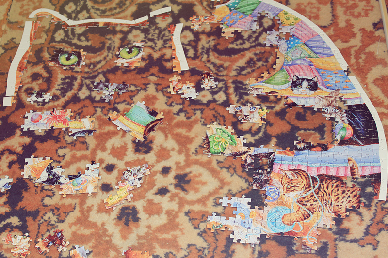 LIVE 2014, Puzzle, Hobby