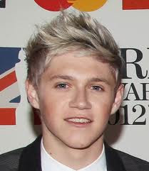 NIALL HORAN ONE DIRECTION HAIRSTYLE