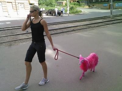 ピンクのヤギ
