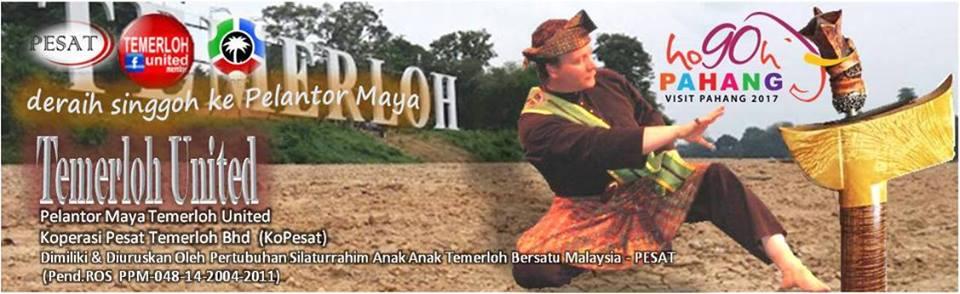 Pertubuhan Silaturahim Anak Anak Temerloh Bersatu Malaysia (PESAT)