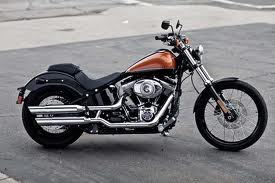 2011 Harley Davidson Blackline Picture