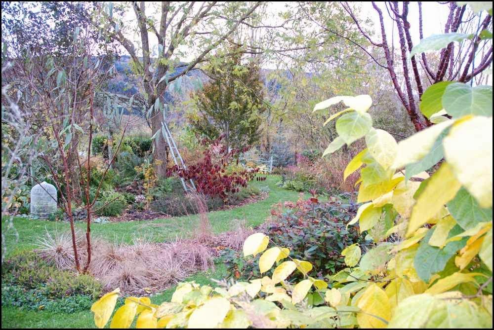 Le jardin du mayet dans la grisaille de dimanche for Le jardin high wine