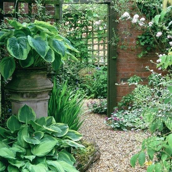Tankar från Trädgårdsmästarn: Skuggig rabatt, spaljé, grus ...