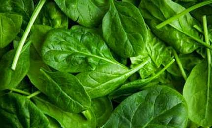10 Benefits of Spinach