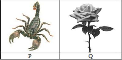 Kedua makhluk hiduptersebut berkembangbiak dengan cara .