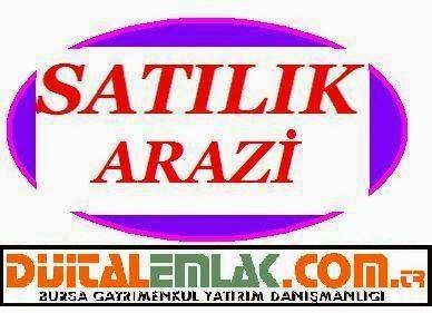 http://www.dijitalemlak.com.tr/ilan/2326957_nilufer-demircide-acil-satilik-konut-imarli-1400-m2-arsa.html