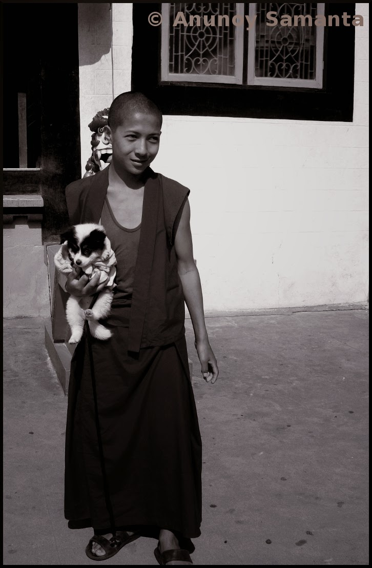 The young Monk with his Puppy