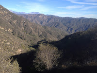 View east into Water Canyon from old 2N28 and the saddle between Water Canyon and Roberts Canyon, Angeles National Forest