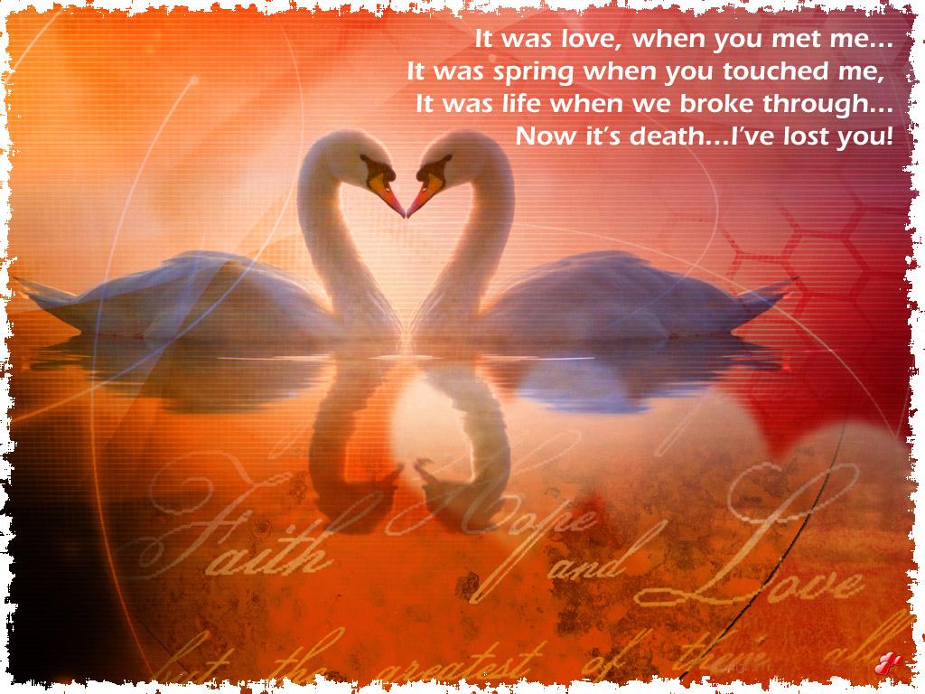 http://4.bp.blogspot.com/-XLpCkB7ZGaQ/TlFODOOyYDI/AAAAAAAABII/uVqCF0i4obw/s1600/Love_Quotes_Wallpapers_Umeaurhum44.jpg
