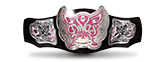 WWE women's championship title belt divas butterfly