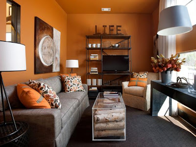 Hgtv Living Room Wall Ideas