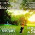 Encuentro de Mensajeros - Parque Bosques - 17/10/2015