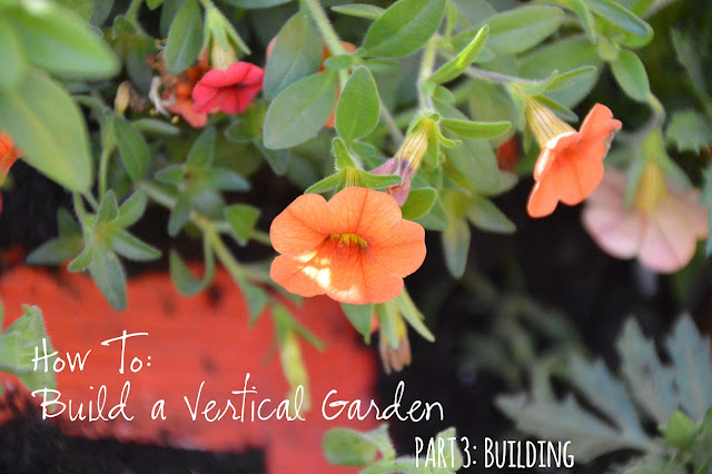 Journey To A Vertical Garden Part 3 Home Depot Digin
