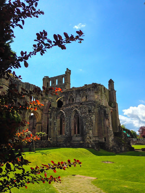 Melrose Abbey from gardens